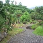 Ботанический сад Каракаса