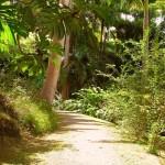 Ботанический сад Флауэр-Форест около Сент-Джозефа