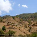 Холмистый рельеф в Дили