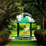 Ботанический сад Сент-Винсент