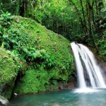 Водопад в тропическом лесу, Пти-Мартиника