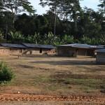 Деревня Какао