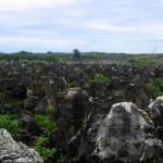 Известняковое плато