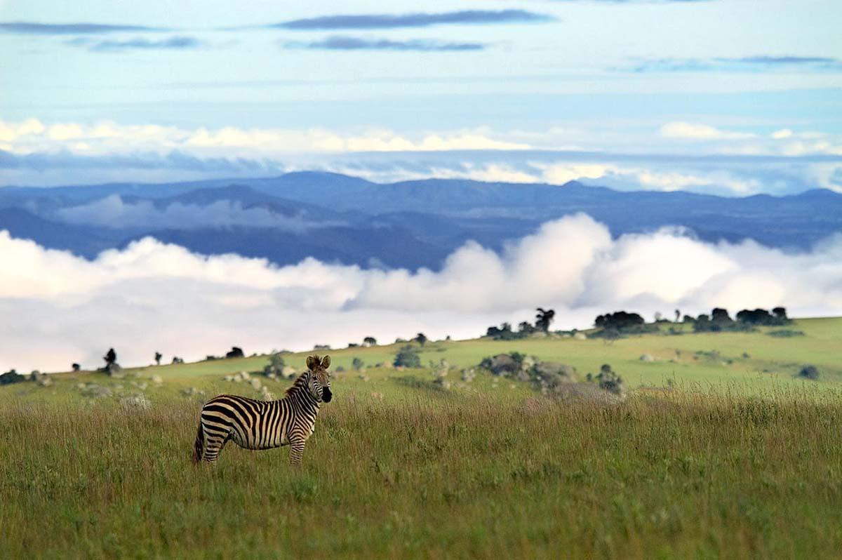 Республика Малави
