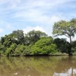 Национальный парк «Аутамба-Килими»
