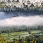 Национальный парк Букит Барисан