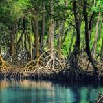 Национальный парк Гаитисес, Доминикана