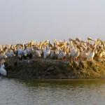 Национальный парк Джудж