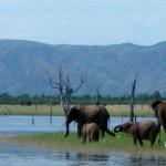 Национальный парк Матусадона