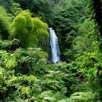 Национальный парк Морн-Труа-Питон