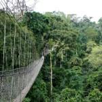 Национальный парк Kamuku