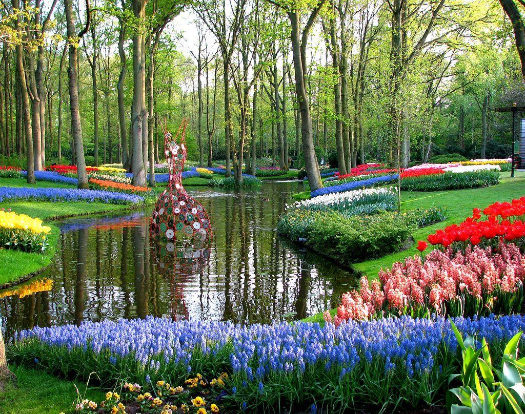 Голландия (Кекенхоф)