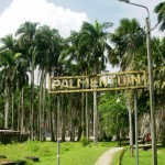 Палментуин (Парамарибо)
