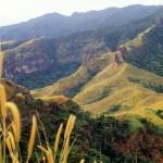 Парк национального наследия «Корояниту»
