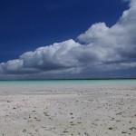Песчаное побережье
