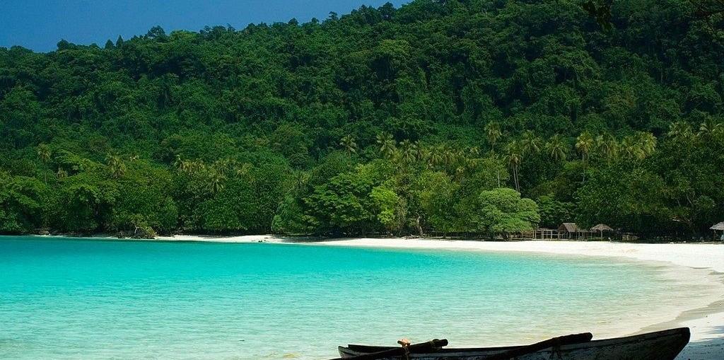 Леса Вануату, Соломоновы Острова