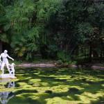Приморский парк в Гагре