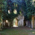 Мюссерский храм, Мюссерский заповедник