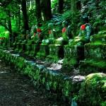 Ботанический сад Никко