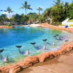 Парк Sea World