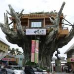 Ресторан Наха Харбур Динэ (Окинава)