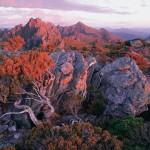 Юго-Западный национальный парк