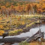 Национальный парк Огненная Земля