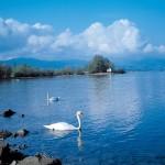 Боденское озеро (Брегенц)